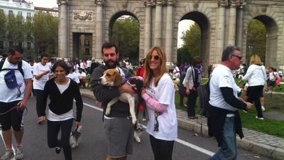 Me trajeron a mi perro de Valencia para correr la Perrotón