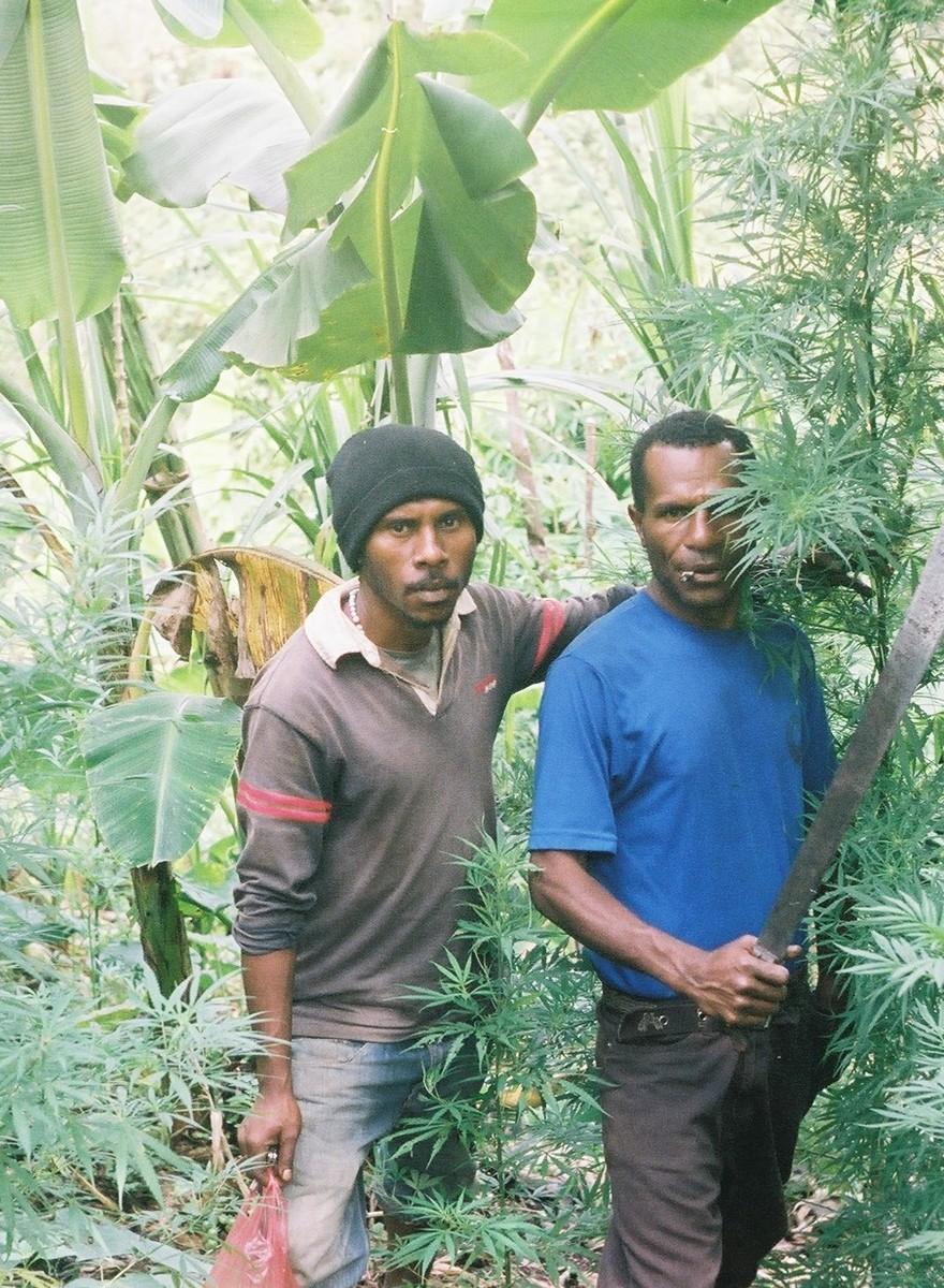 Polaroids von Papua-Neugineas jungen Hanfbauern
