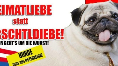 Diese Plattform will verhindern, dass Österreich vor die Hunde geht
