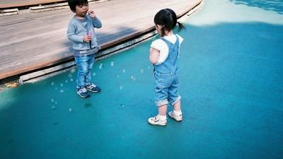 Les enfants en kimono et les ratons-laveurs en laisse de Tokyo