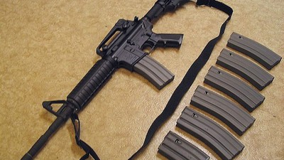 Sandy Hook Families Are Suing Bushmaster for Making Adam Lanza's Rifle