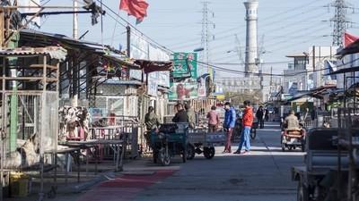El cruel y polémico mercado negro de perros de Pekín