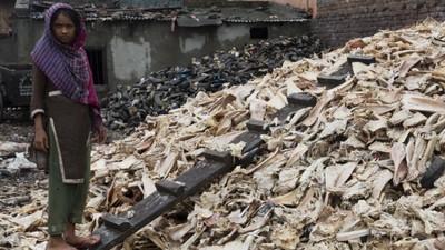 La tóxica industria del cuero de Bangladesh