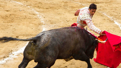 The Beauty and Moral Ambiguity of Bullfighting