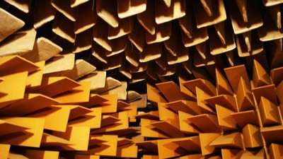 Inside a Room Built for Total Silence