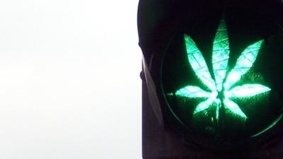 """Neue Studie schätzt Marihuana als """"ungefährlich"""" ein"""