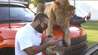 Leeuwen en panters in de Perzische Golf