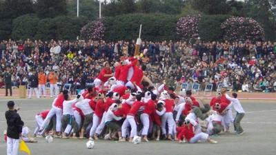 Bo-Taoshi: el deporte más absurdo del planeta es japonés y va de hostiarse por un palo