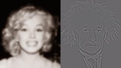 Seht ihr in dieser optischen Illusion Marilyn Monroe oder Albert Einstein?