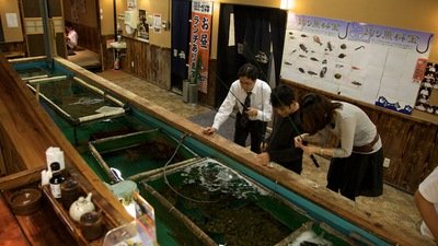 A Japanese Chain Restaurant That Lets You Catch and Eat Your Own Fish Wants to Come to America