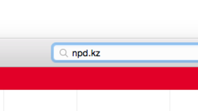 """Die """"npd.kz""""-Domain ist ein Fake, sagt die NPD"""