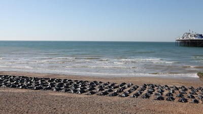 The Sight of 200 Body Bags Roasting on a Beach in the UK Might Be Amnesty's Best Stunt Yet