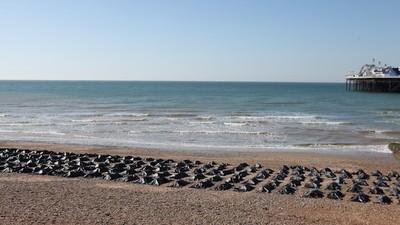 Amnesty Internationals 200 Leichensäcke am Strand sind vermutlich ihre bisher beste Aktion