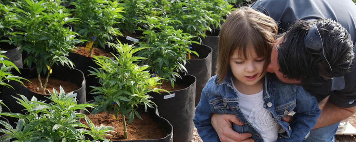 The Heartbreaking Plight of Colorado's 'Marijuana Refugees'