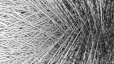 Verliert euch in einer hypnotischen Code-Welt aus geometrischen Mustern