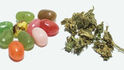Fruitwiet, de nieuwste trend in cannabisland, is dikke onzin
