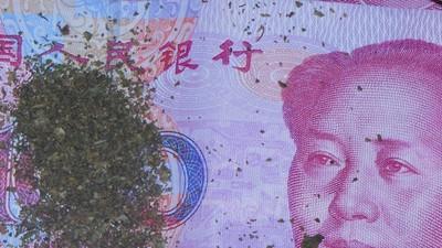 Het is niet makkelijk om een stoner in Peking te zijn