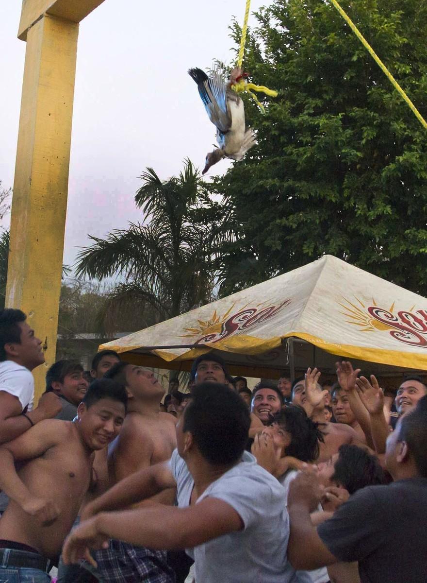 In Yucatán ist es Tradition, Piñatas mit lebendigen Tieren zu füllen