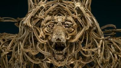 Artistul ăsta face sculpturi din oase de animale
