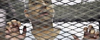 We Talked to Canadian Journalist Mohamed Fahmy's Lawyer About that $100-Million Lawsuit Against Al Jazeera