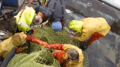 De superslimme plannen van Urkse vissers om hun beroep te redden