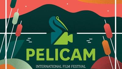 VICE te trimite în Deltă la Pelicam, să mănânci pește și să te uiți la filme despre mediu