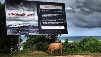 We Asked Sri Lankans What They Think of Australia's Anti-Refugee Billboards