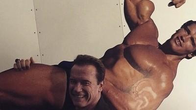 In Praise of Arnold Schwarzenegger, Aging Badass
