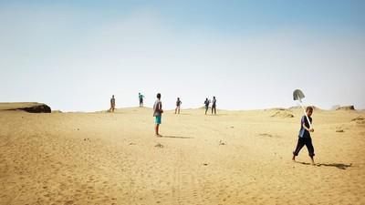 Les pilleurs de sable