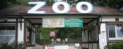 Причины, по которым мы должны отказаться от зоопарков