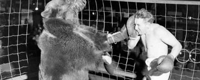 La retorcida y terrible historia de los hombres peleando con osos