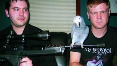 De enige grindcoreband met een papegaai als frontman heeft een nieuw album uit