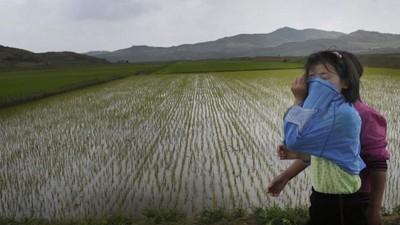 Noord-Korea heeft Iran om hulp gevraagd vanwege extreme droogte