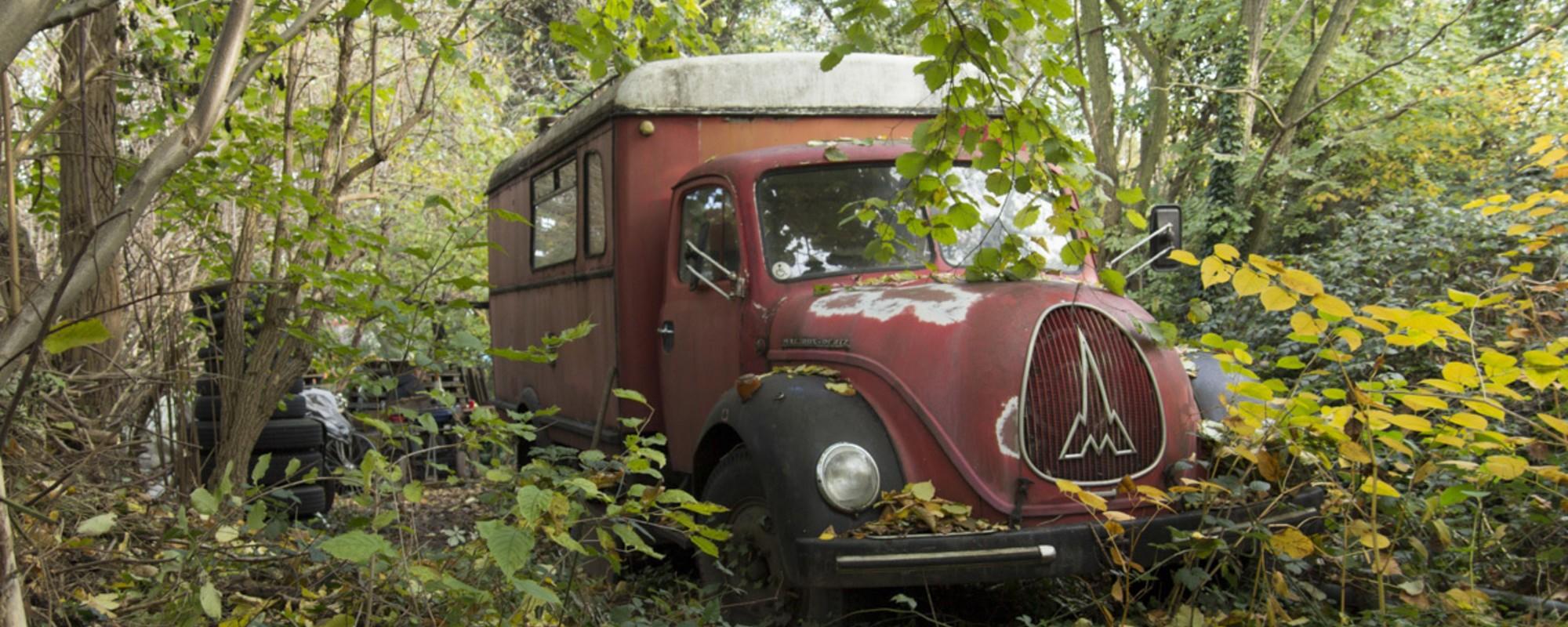 De gezellige troep van mensen die in woonwagens en oude bussen wonen
