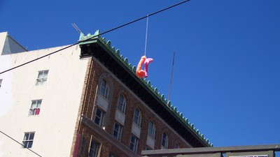 This Woman Is Doing Her Part to Keep Portland Weird by Decorating Power Lines with Dildos