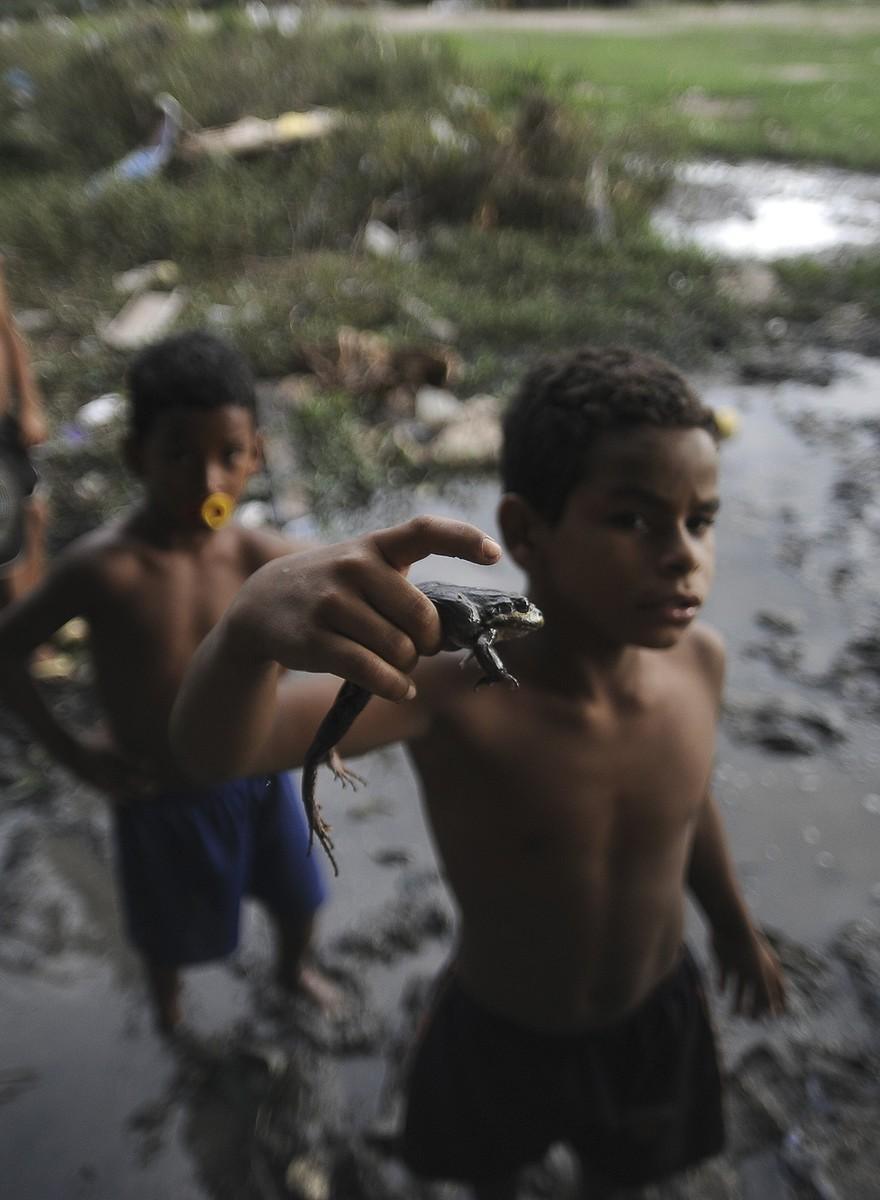 Crianças Brincam de Caçar Rãs no RJ