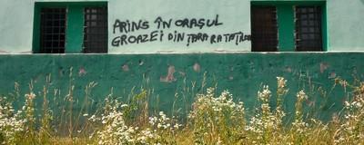În Petrila, pereții transpiră poezie