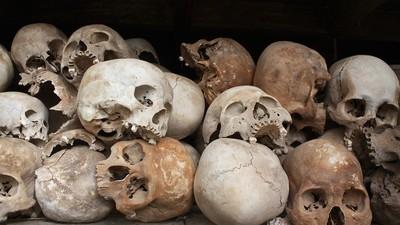 Het verband tussen 20 schedels, een doofpotgenocide en de Holocaust