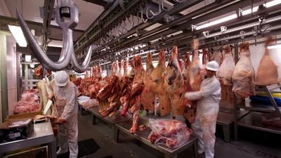 Muerte y mugre: así es trabajar en un matadero fraudulento en Holanda