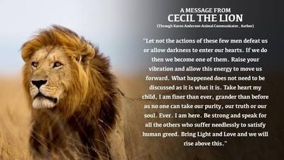 O clarvăzătoare ne-a zis ce spune leul Cecil, din raiul animalelor
