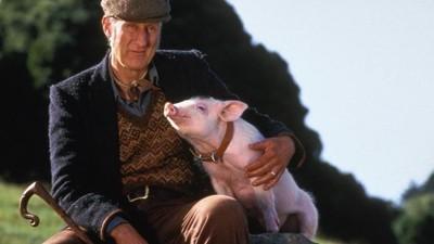 'Babe, el cerdito valiente' y la cruzada de James Cromwell por los derechos de los animales cumplen 20 años
