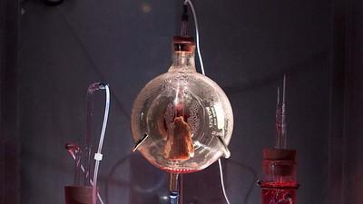 The Strange, Ethically Ambiguous World of Biological Art