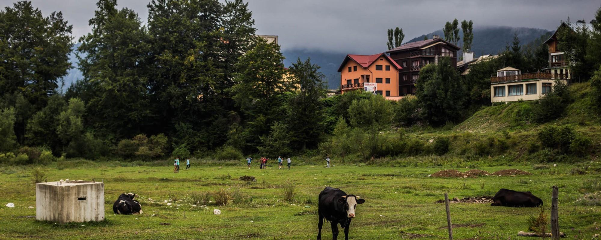 Azuga e mai pustie ca Valea Jiului, deși e pe Valea Prahovei