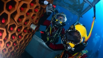 Wine That's Aged Underwater Is the Buried Treasure of the Sea