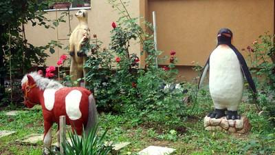 Pinguinii din Berceni au inimi de polistiren