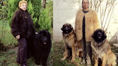 Señoras y sus abrigos de lana de perro