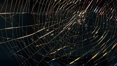 Adevăratul Dark Web nu există