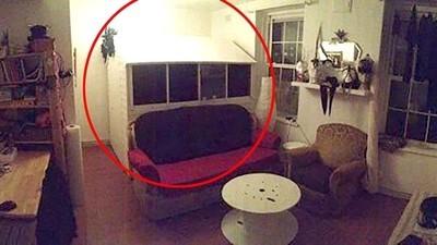 Ho trovato casa a Londra: un capanno dentro il salotto di qualcuno