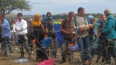 A Maré-Cheia da Migração