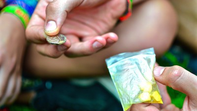 I Walked Around a Music Festival Asking to Test People's Drugs